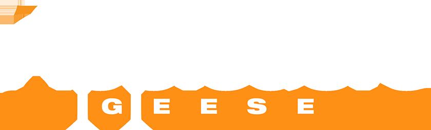 Appledore Geese Logo